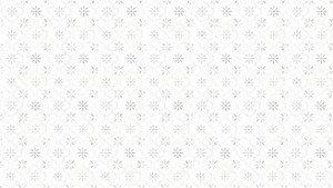 2007_background