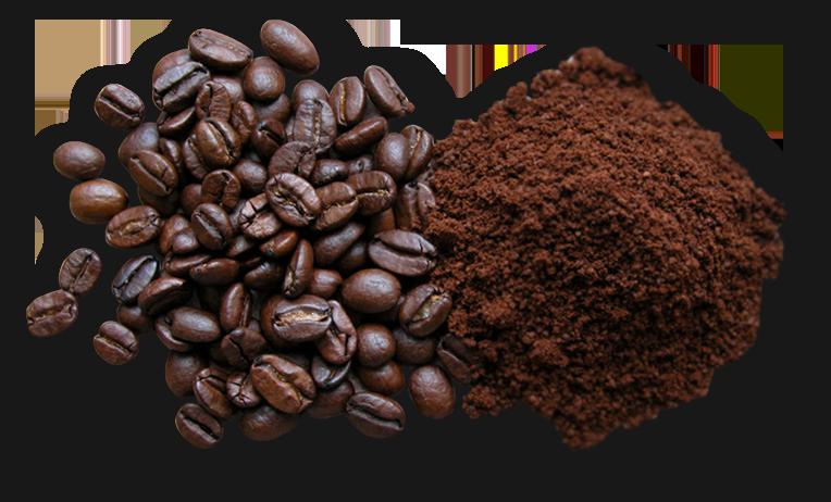 7_coffee_xwma